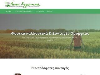 fysika-kallyntika.gr